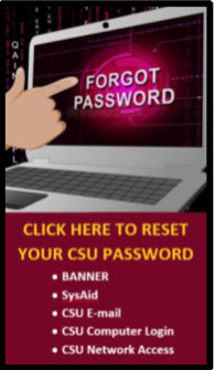 Click Here to reset your CSU password: Banner, SysAid, CSU Email, CSU Computer login, CSU Network Access