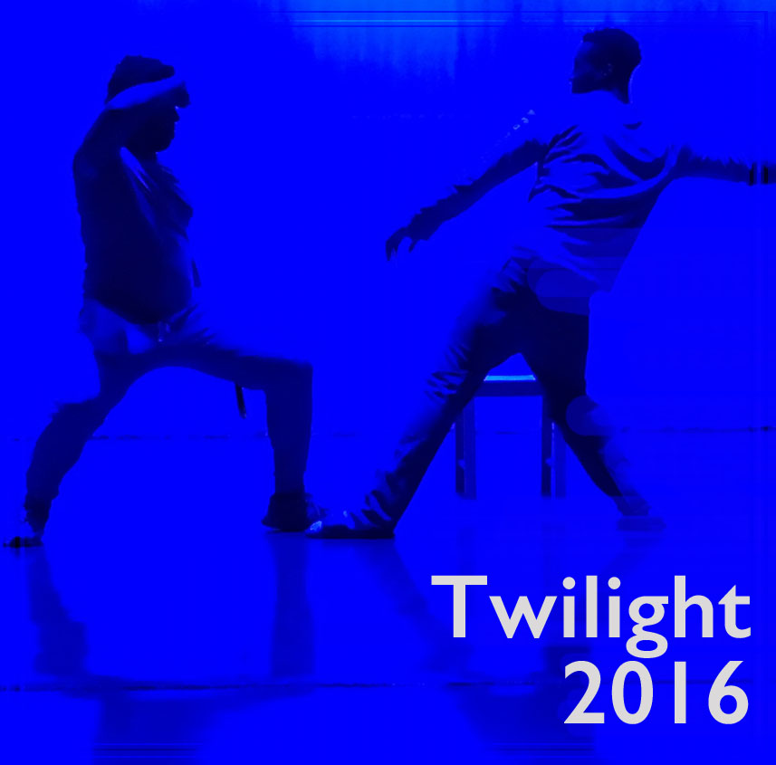 link to Twilight 2016 page, Twilight 2016