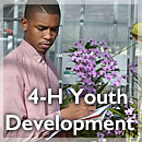 link to 4-H Youth Development page