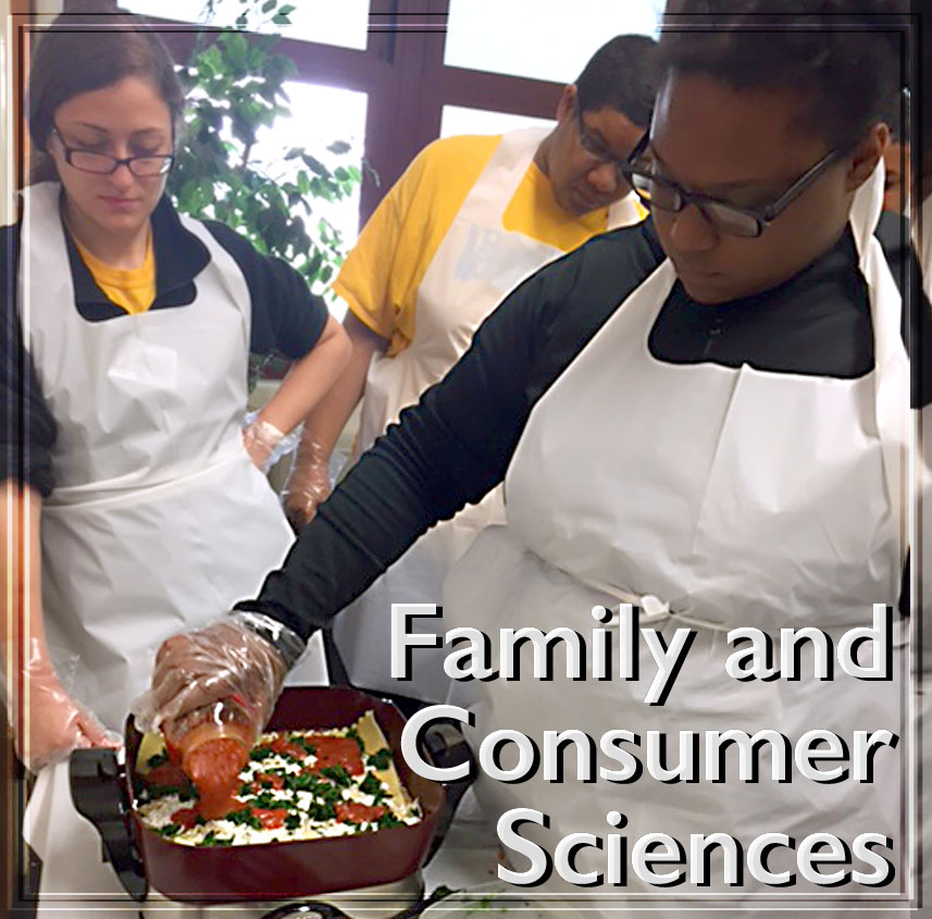 link to Family and Consumer Sciences page, Family and Consumer Sciences
