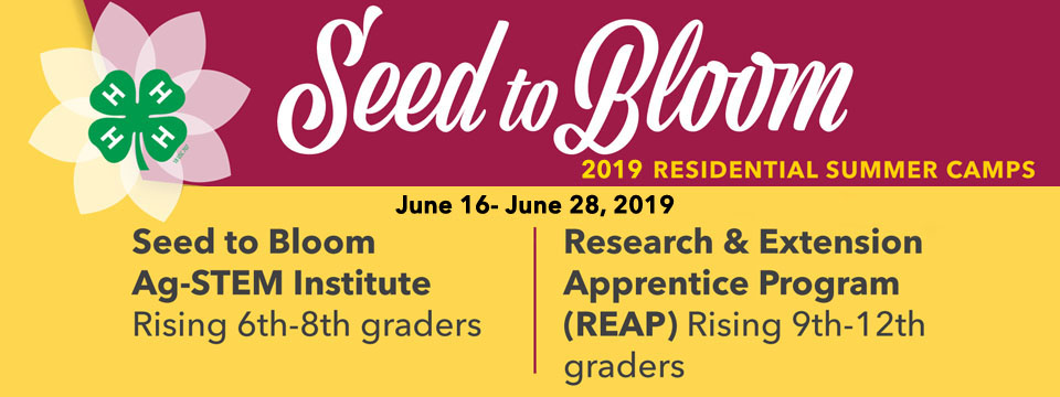 Seed to Bloom 2019 Residential Summer Camps